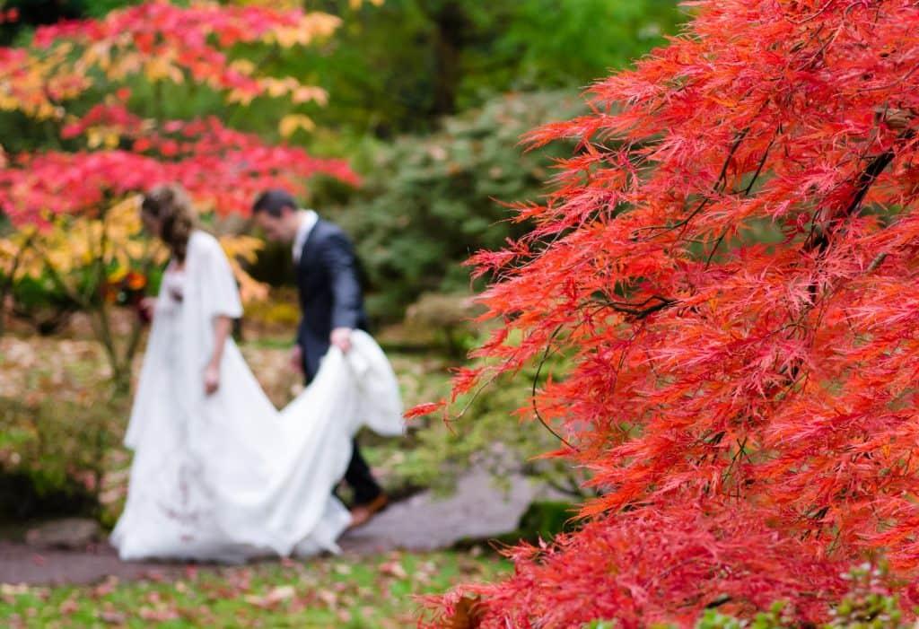 Hochzeit im Herbst 1024x701 - Hochzeit im Herbst?