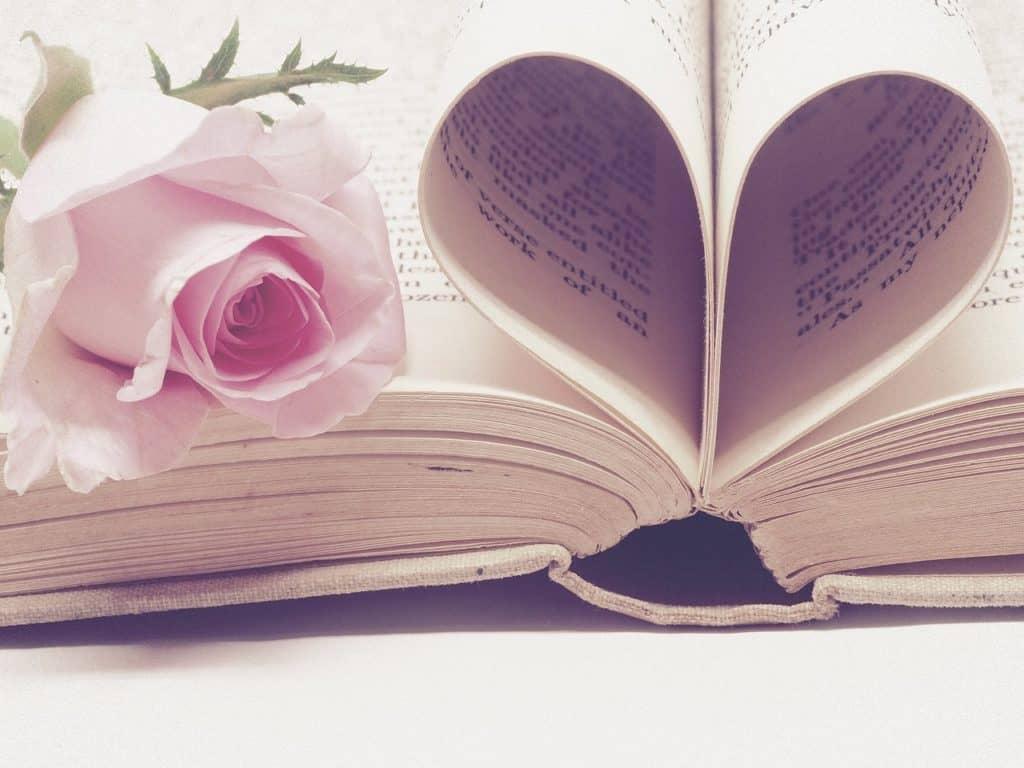 literature 3060241 1280 1024x768 - Tipps von eurem Wedding Planner