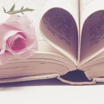 literature 3060241 1280 350x350 - Magazin